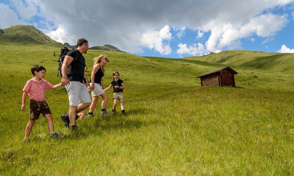 Wanderungen im Blütenmeer der Dolomiten